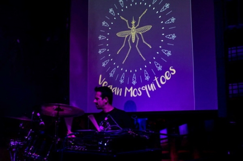 Live Review: Vegan Mosquitoes / Sun, Rain In Life @ BUMS, 20/10/16