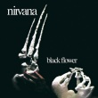 Nirvana (UK) – Black Flower (Esoteric Recordings, 2018)