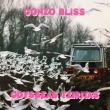 Odysseas Tziritas - Gonzo Bliss (Hard Pass Records/The Hubsters, 2020)